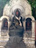 Monkey meditators